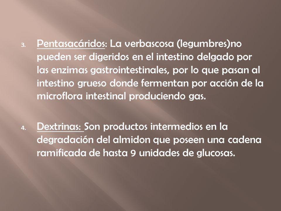 Pentasacáridos: La verbascosa (legumbres)no pueden ser digeridos en el intestino delgado por las enzimas gastrointestinales, por lo que pasan al intestino grueso donde fermentan por acción de la microflora intestinal produciendo gas.