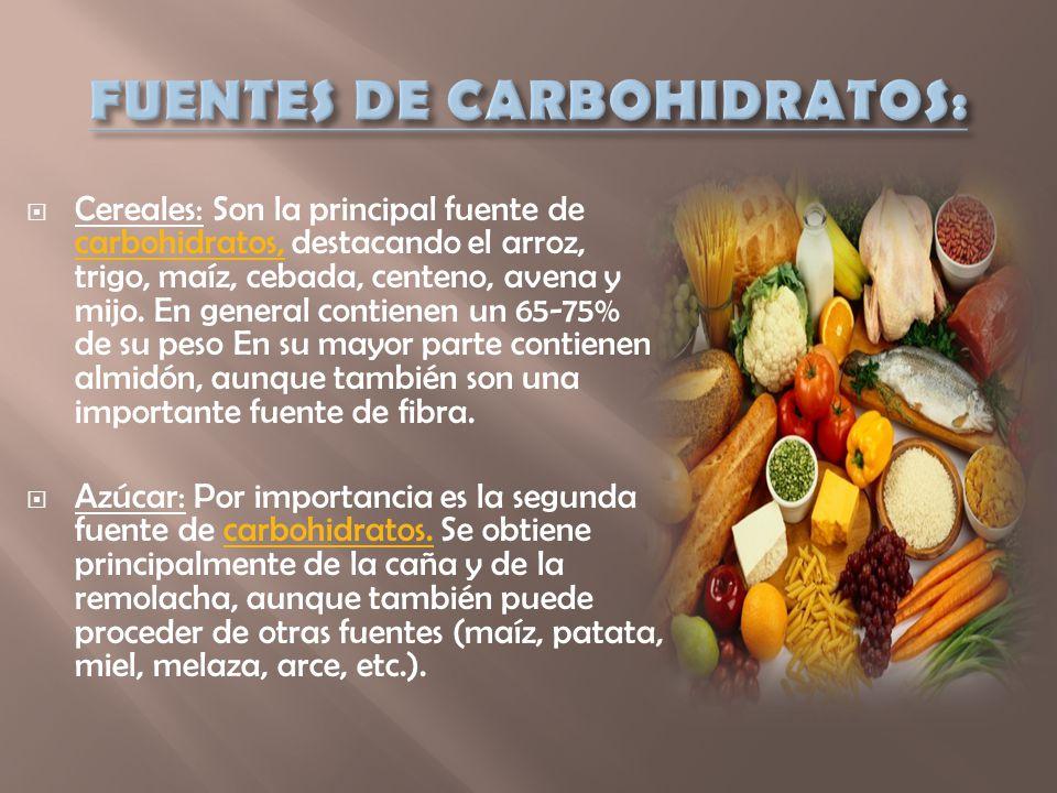 FUENTES DE CARBOHIDRATOS:
