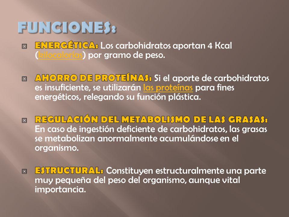 FUNCIONES: ENERGÉTICA: Los carbohidratos aportan 4 Kcal (kilocalorías) por gramo de peso.