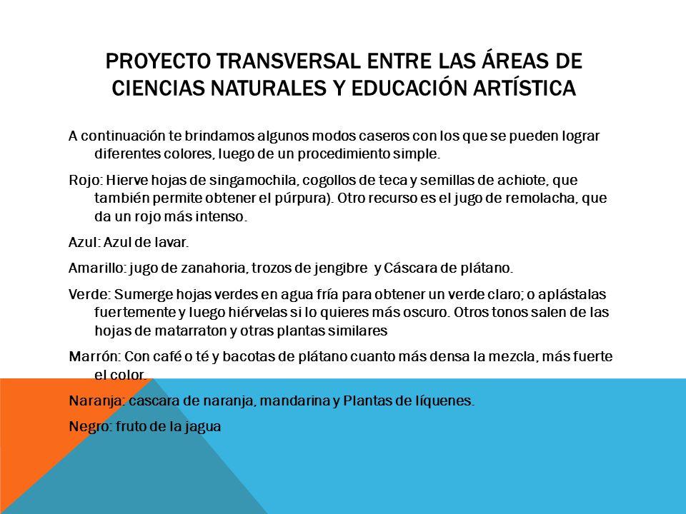 Proyecto transversal entre las áreas de ciencias naturales y educación artística