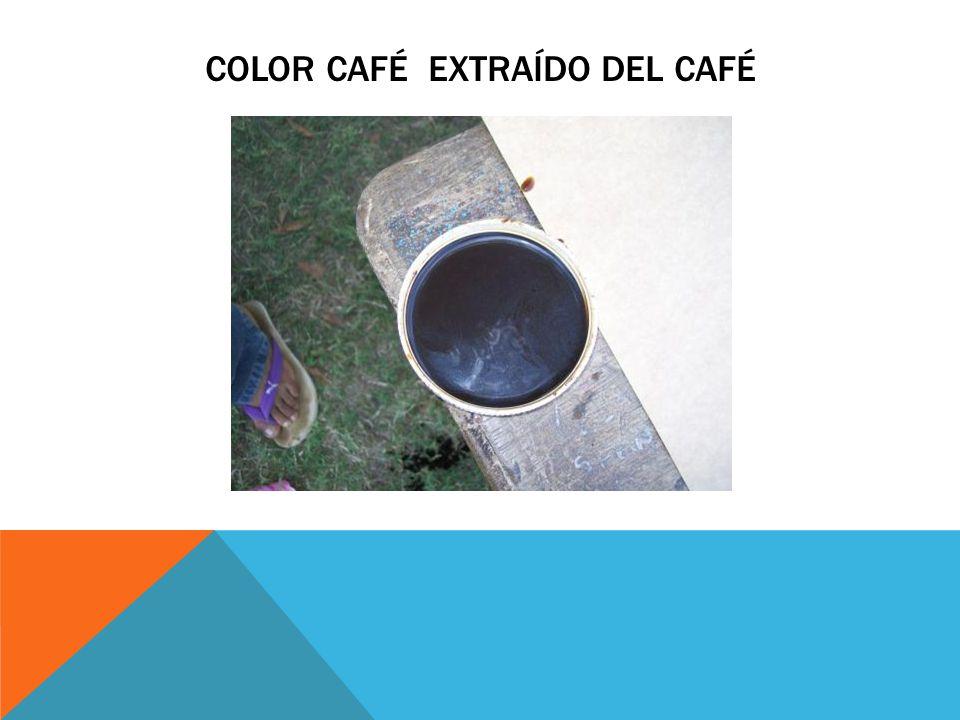 Color café extraído del café