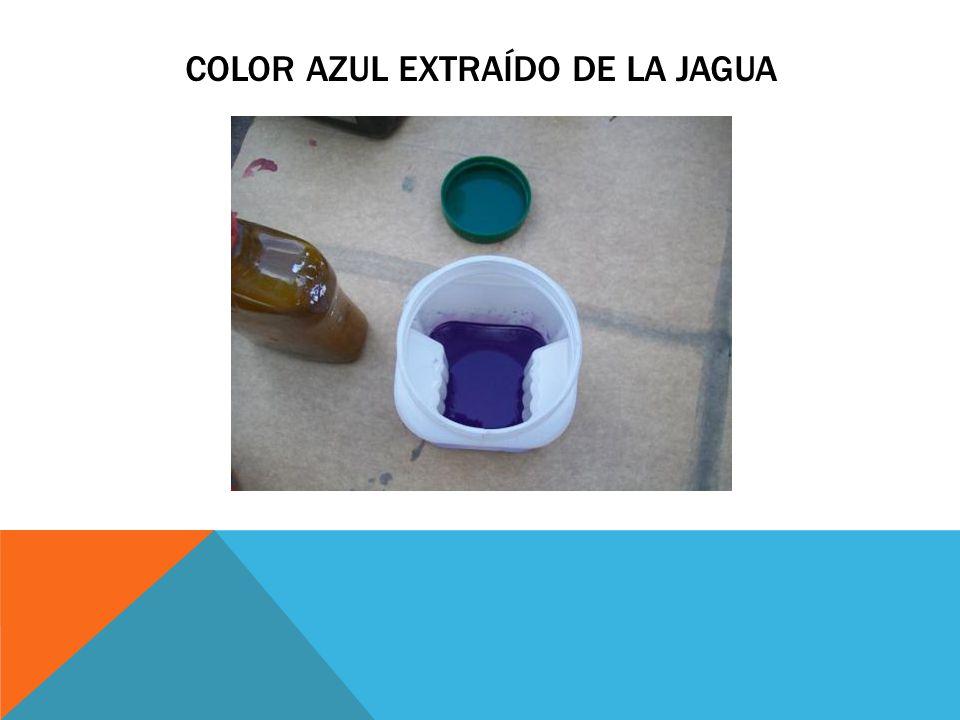 Color azul extraído de la jagua