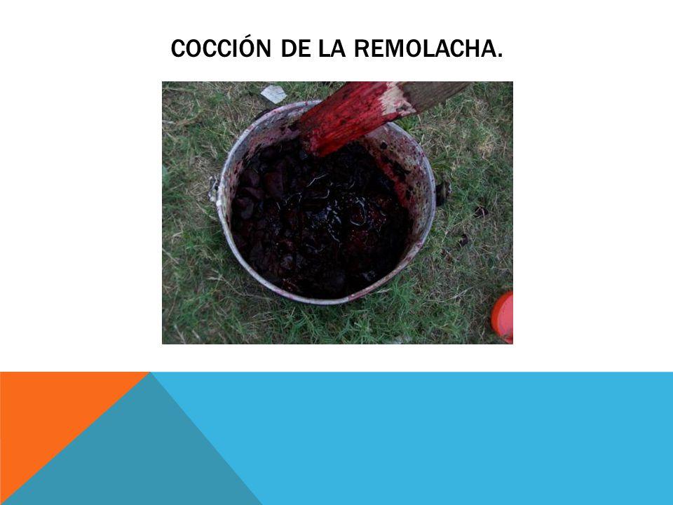 Cocción de la remolacha.