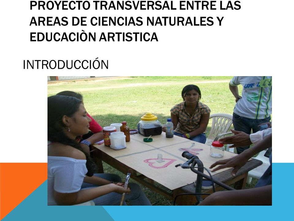 PROYECTO TRANSVERSAL ENTRE LAS AREAS DE CIENCIAS NATURALES Y EDUCACIÒN ARTISTICA