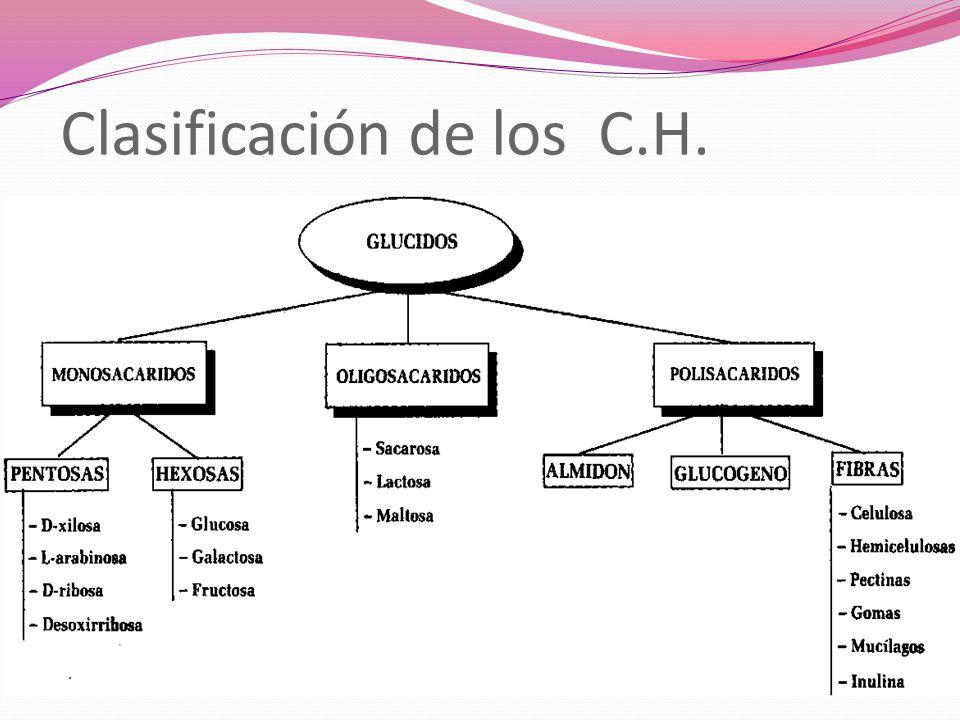 Clasificación de los C.H.