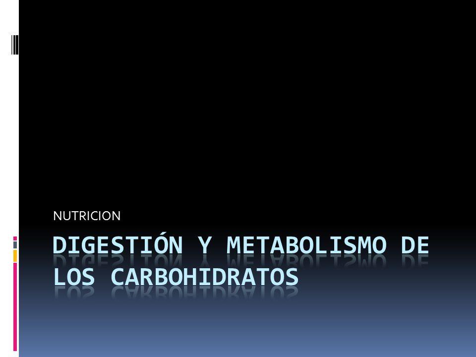 Digestión y metabolismo de los carbohidratos