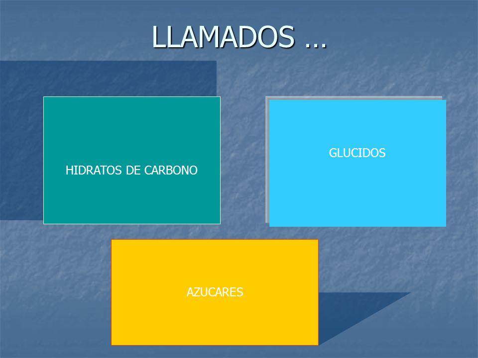 LLAMADOS … HIDRATOS DE CARBONO GLUCIDOS AZUCARES