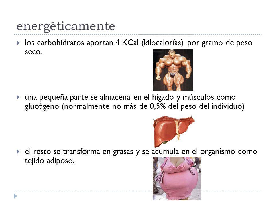 energéticamente los carbohidratos aportan 4 KCal (kilocalorías) por gramo de peso seco.