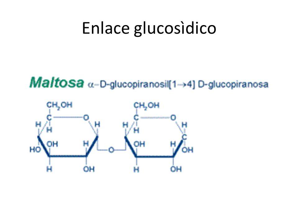 Enlace glucosìdico