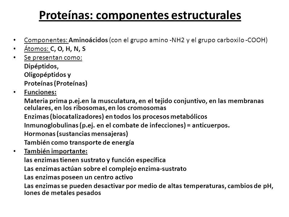 Proteínas: componentes estructurales