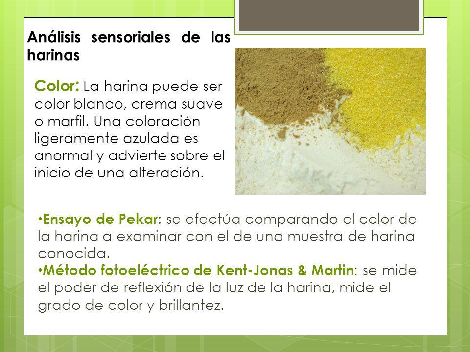 Análisis sensoriales de las harinas