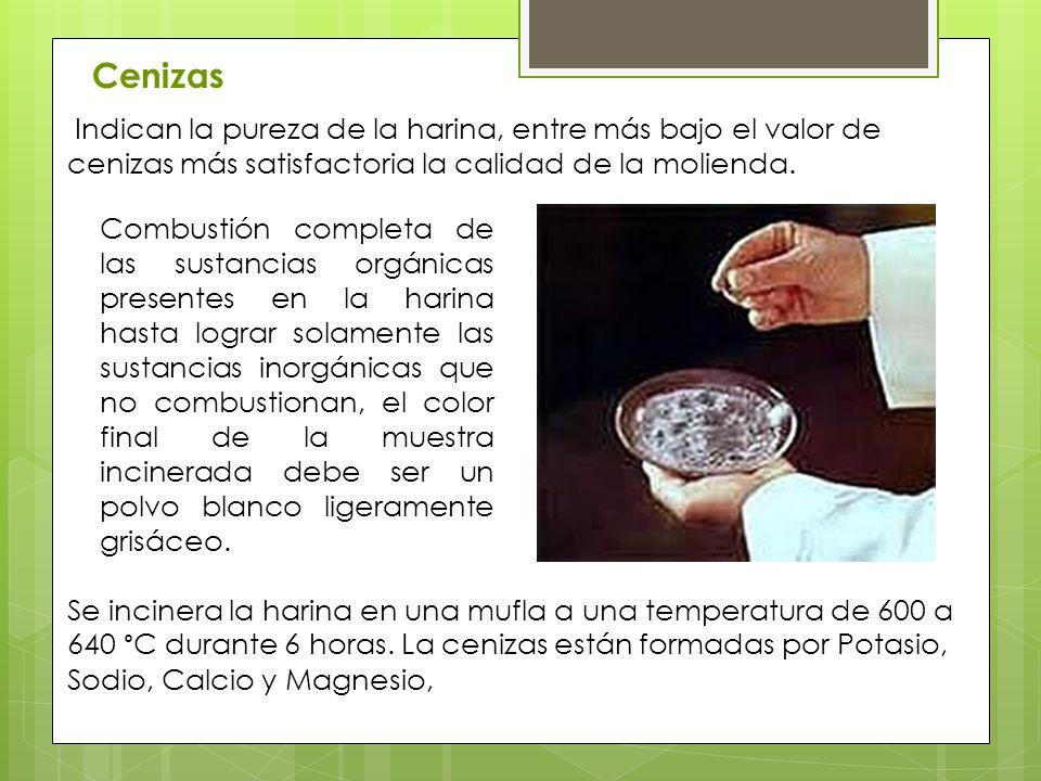 Cenizas Indican la pureza de la harina, entre más bajo el valor de cenizas más satisfactoria la calidad de la molienda.