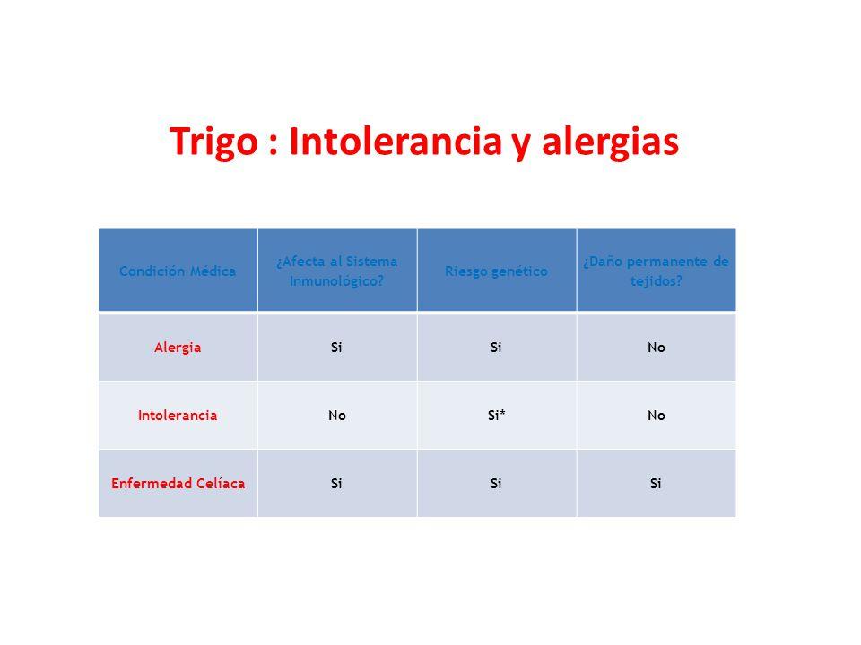 Trigo : Intolerancia y alergias