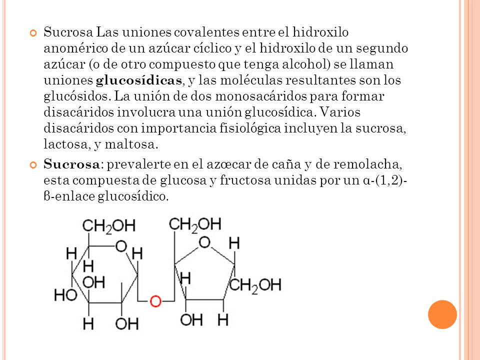 Sucrosa Las uniones covalentes entre el hidroxilo anomérico de un azúcar cíclico y el hidroxilo de un segundo azúcar (o de otro compuesto que tenga alcohol) se llaman uniones glucosídicas, y las moléculas resultantes son los glucósidos. La unión de dos monosacáridos para formar disacáridos involucra una unión glucosídica. Varios disacáridos con importancia fisiológica incluyen la sucrosa, lactosa, y maltosa.