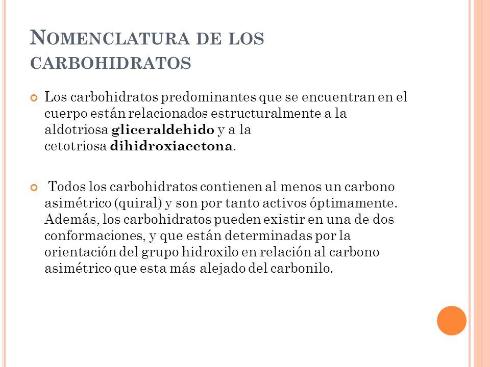 Nomenclatura de los carbohidratos