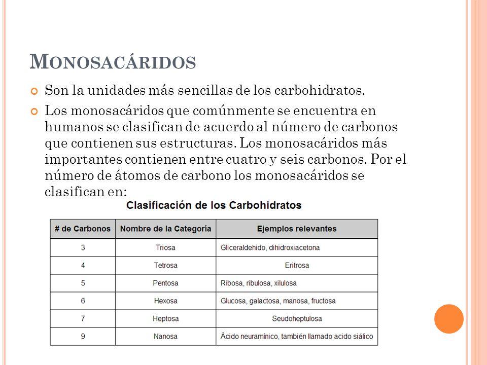 Monosacáridos Son la unidades más sencillas de los carbohidratos.