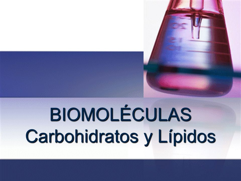 BIOMOLÉCULAS Carbohidratos y Lípidos