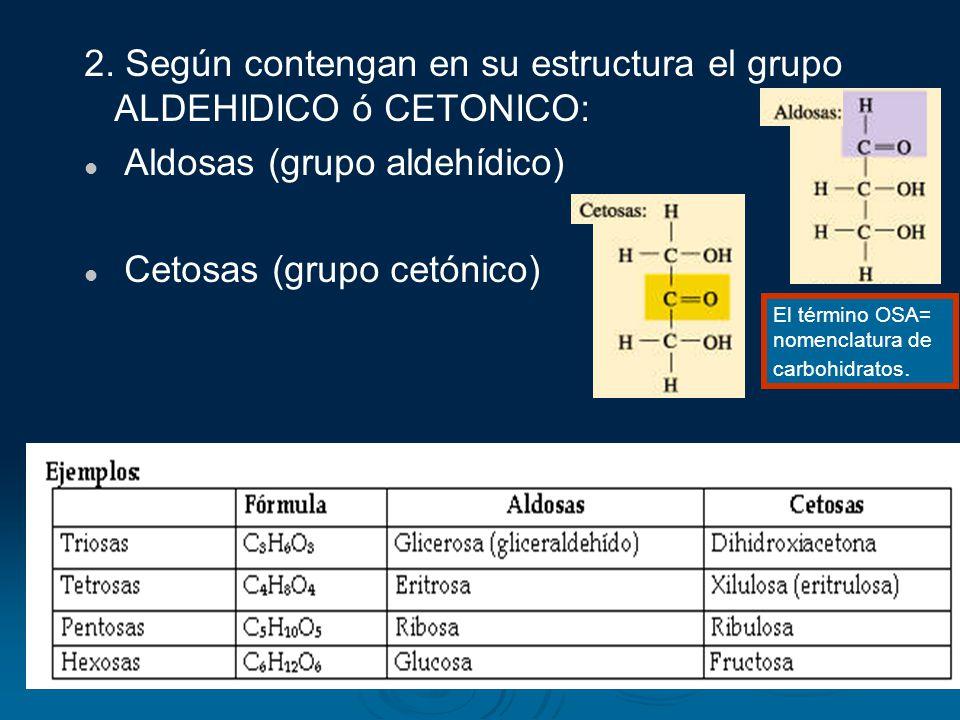 2. Según contengan en su estructura el grupo ALDEHIDICO ó CETONICO: