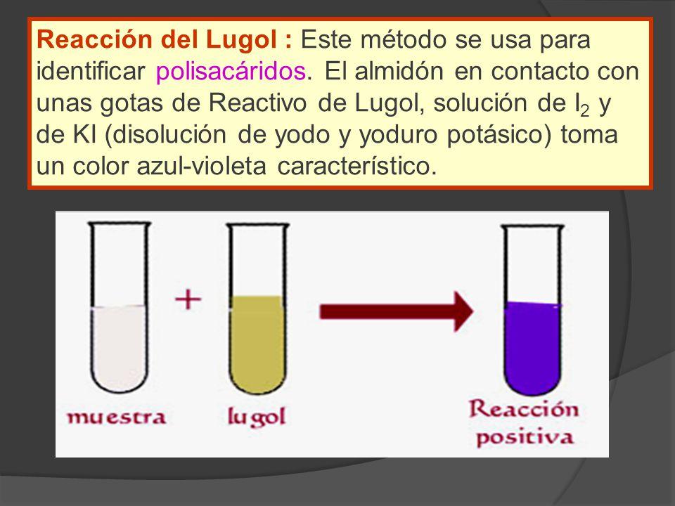 Reacción del Lugol : Este método se usa para identificar polisacáridos