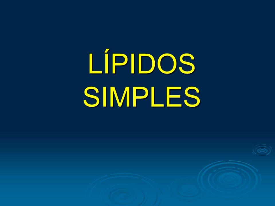 LÍPIDOS SIMPLES