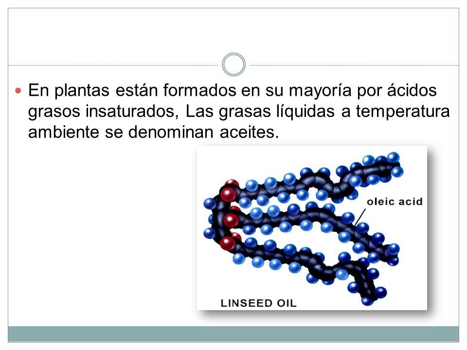 En plantas están formados en su mayoría por ácidos grasos insaturados, Las grasas líquidas a temperatura ambiente se denominan aceites.