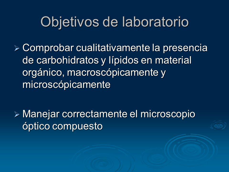 Objetivos de laboratorio