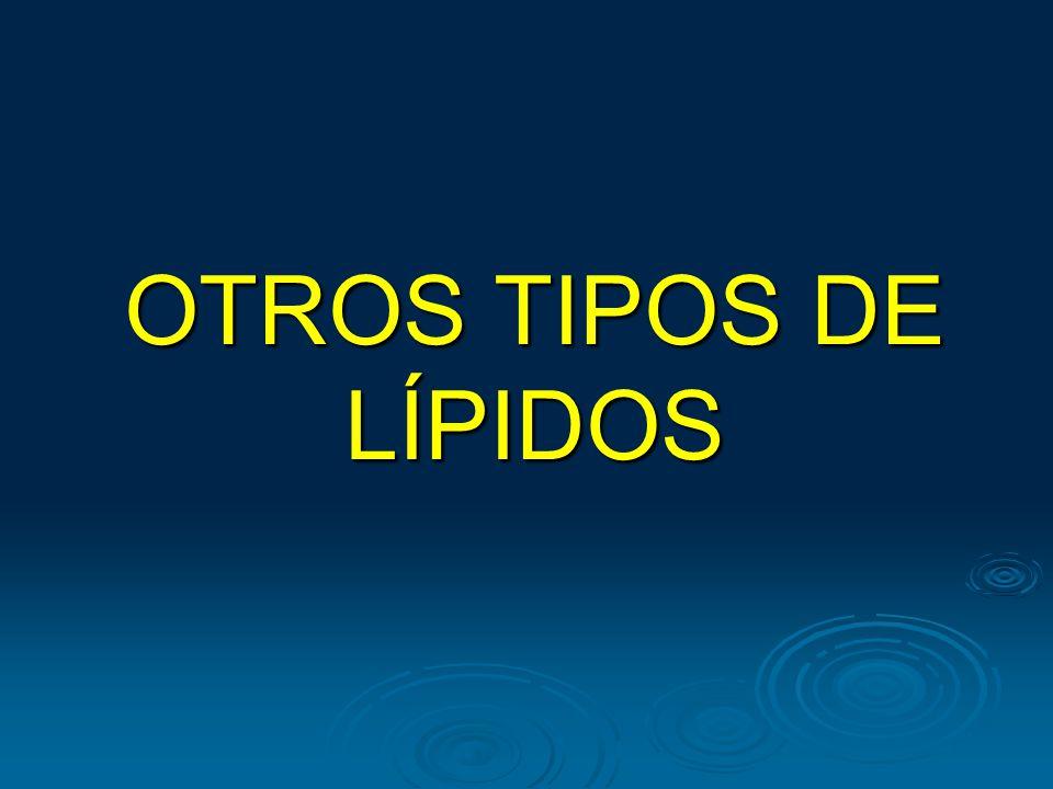 OTROS TIPOS DE LÍPIDOS