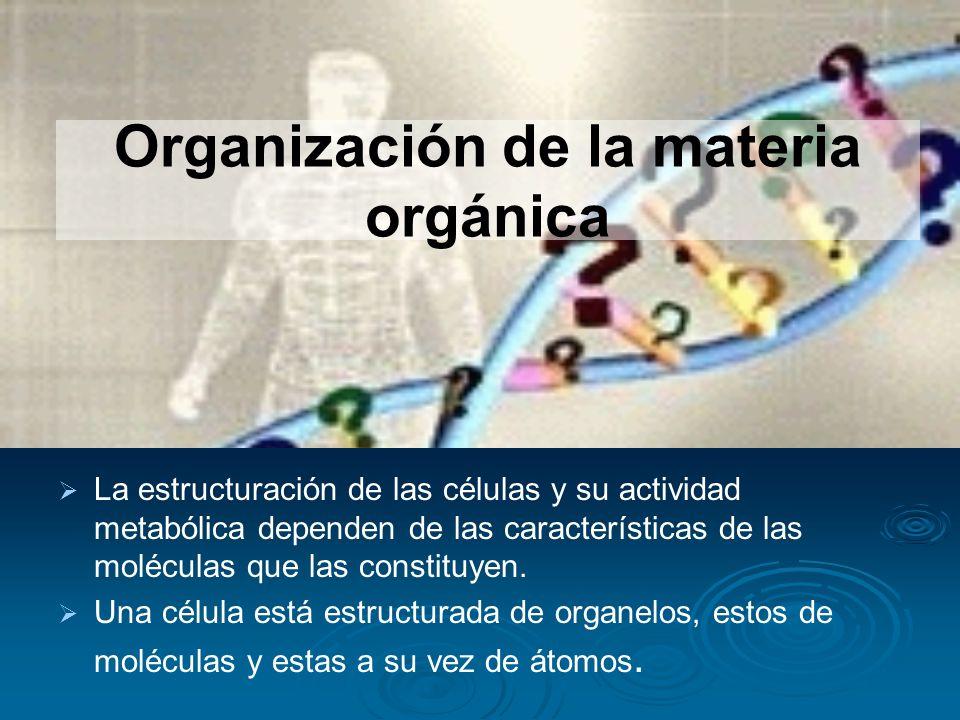 Organización de la materia orgánica