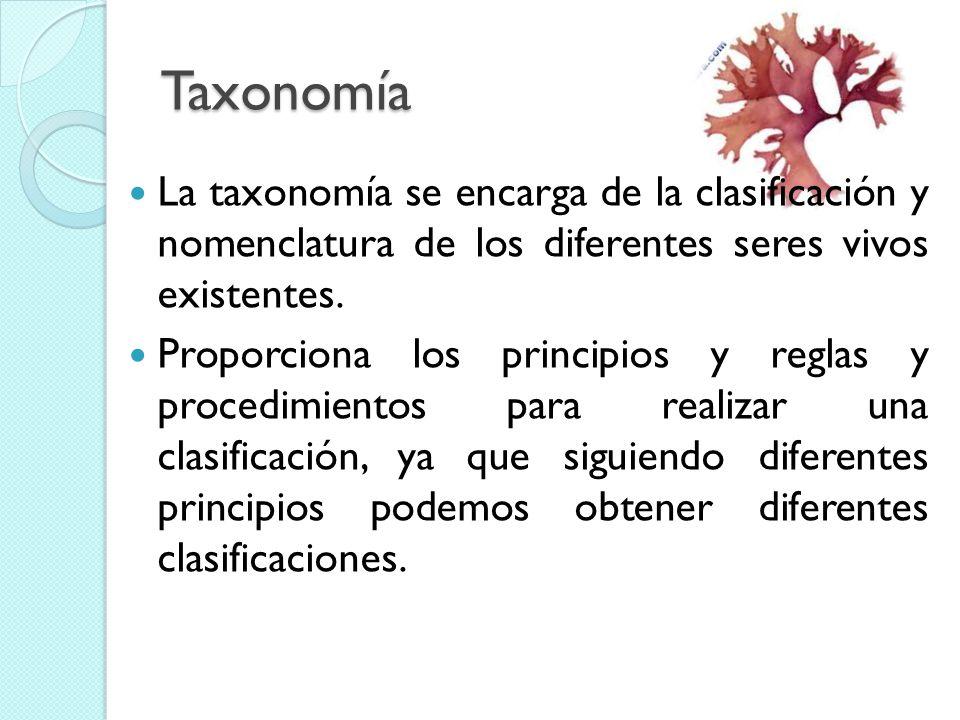 Taxonomía La taxonomía se encarga de la clasificación y nomenclatura de los diferentes seres vivos existentes.