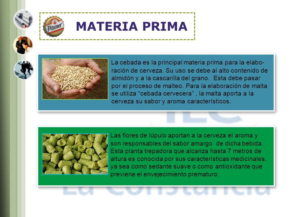 MATERIA PRIMA La cebada es la principal materia prima para la elabo-