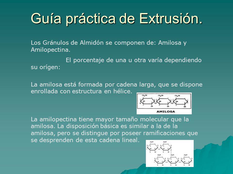 Guía práctica de Extrusión.