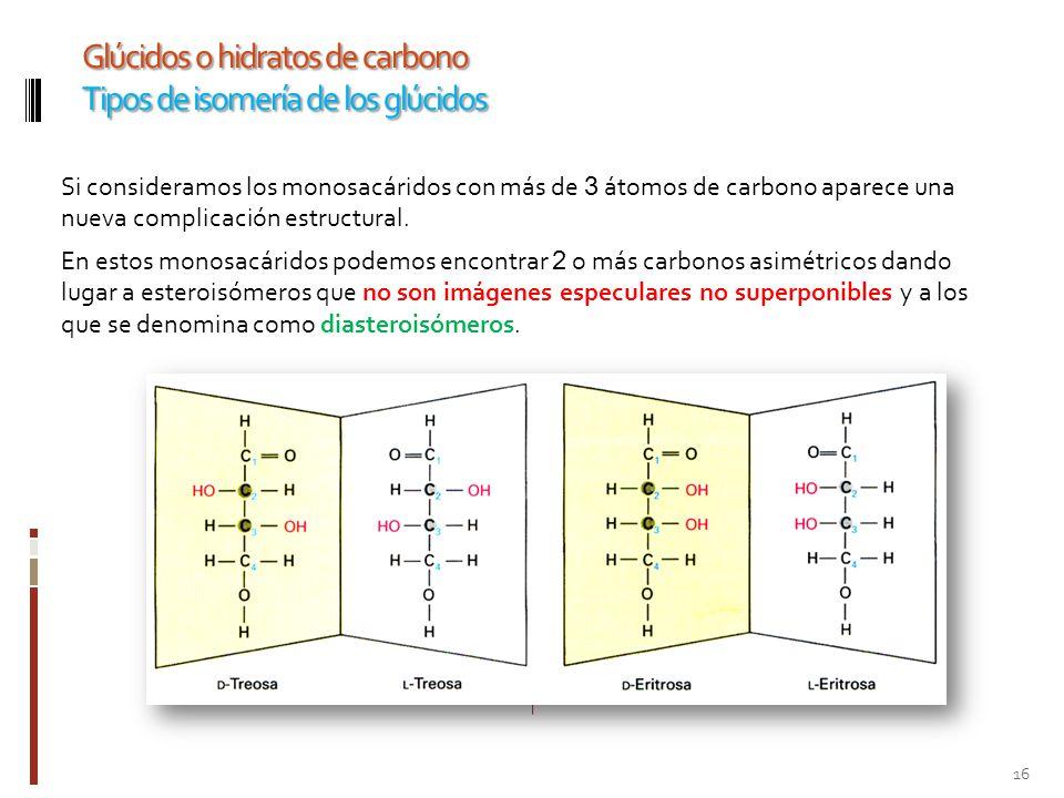 Glúcidos o hidratos de carbono Tipos de isomería de los glúcidos