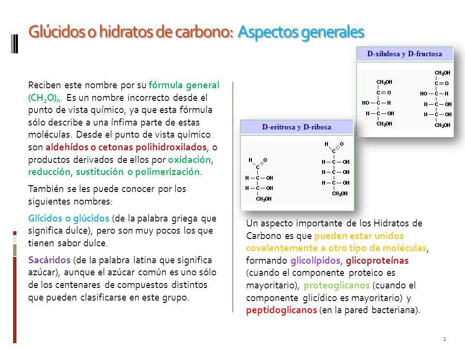 Glúcidos o hidratos de carbono: Aspectos generales