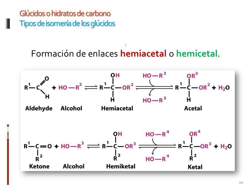Formación de enlaces hemiacetal o hemicetal.