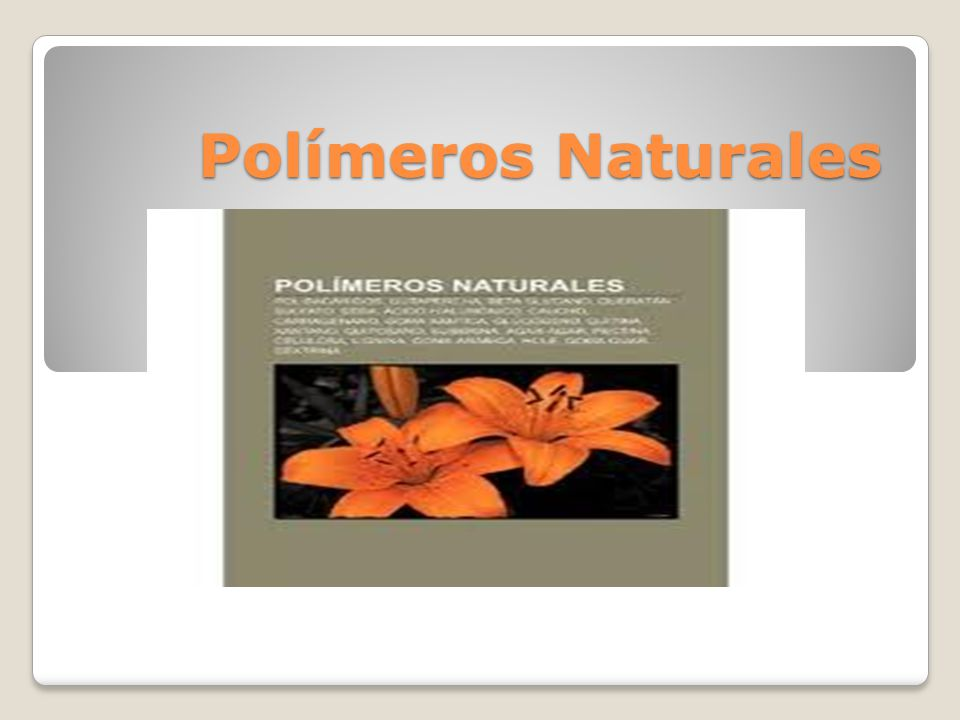 Polímeros Naturales