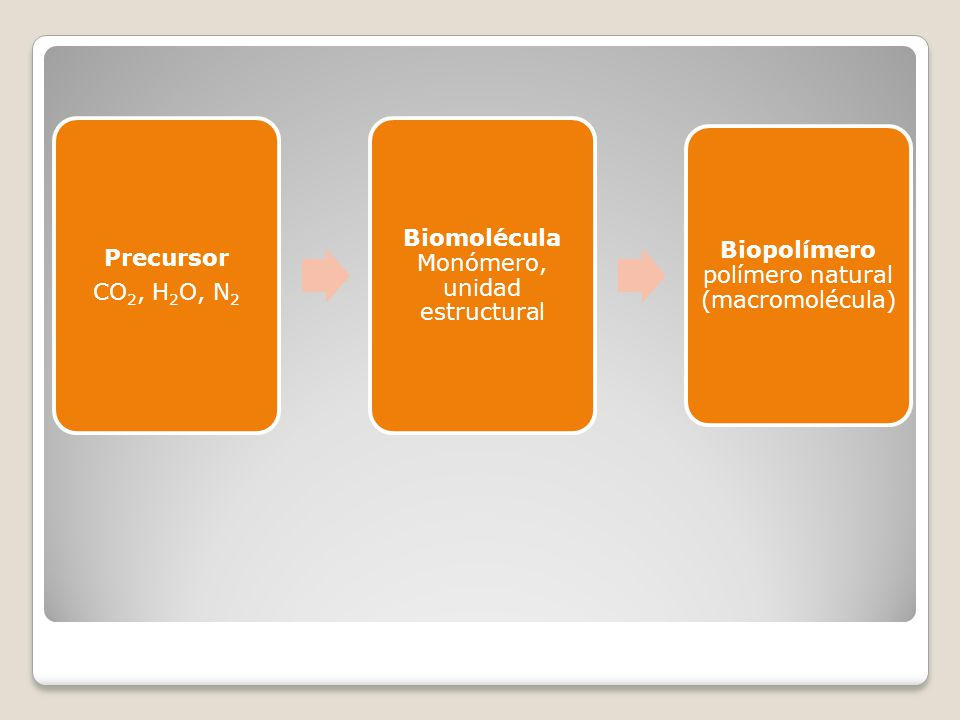 Biomolécula Monómero, unidad estructural