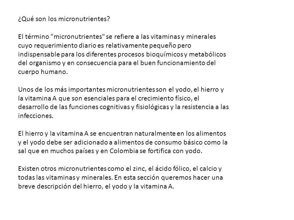 ¿Qué son los micronutrientes