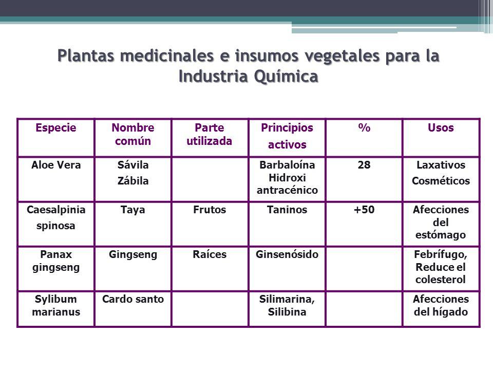 Plantas medicinales e insumos vegetales para la Industria Química
