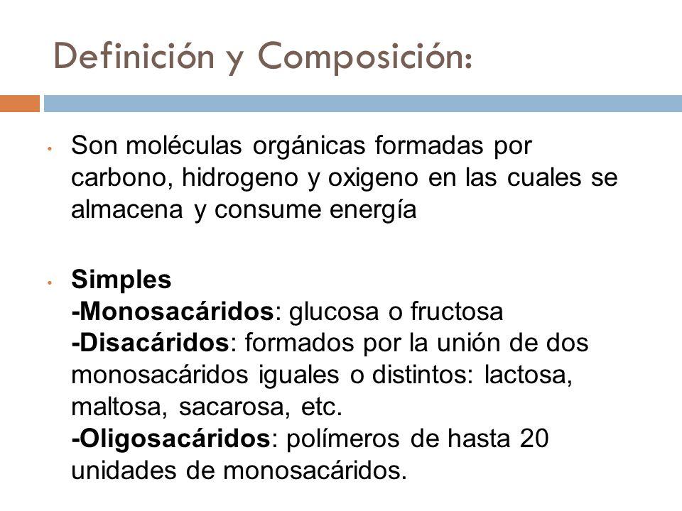 Definición y Composición: