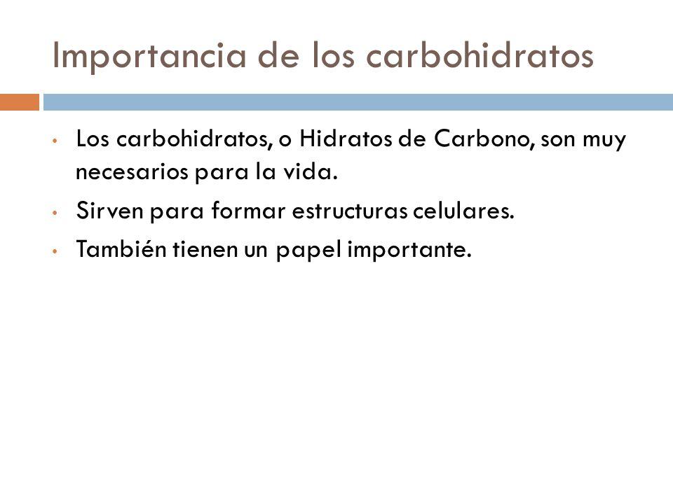 Importancia de los carbohidratos