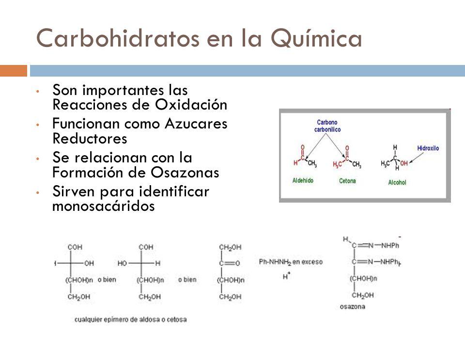 Carbohidratos en la Química