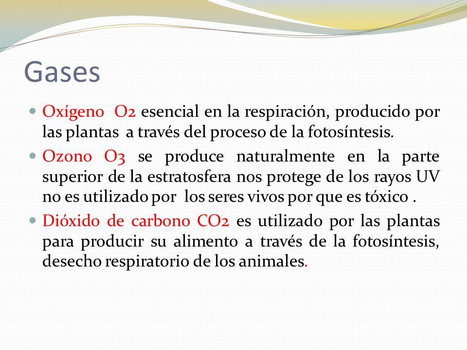 Gases Oxígeno O2 esencial en la respiración, producido por las plantas a través del proceso de la fotosíntesis.