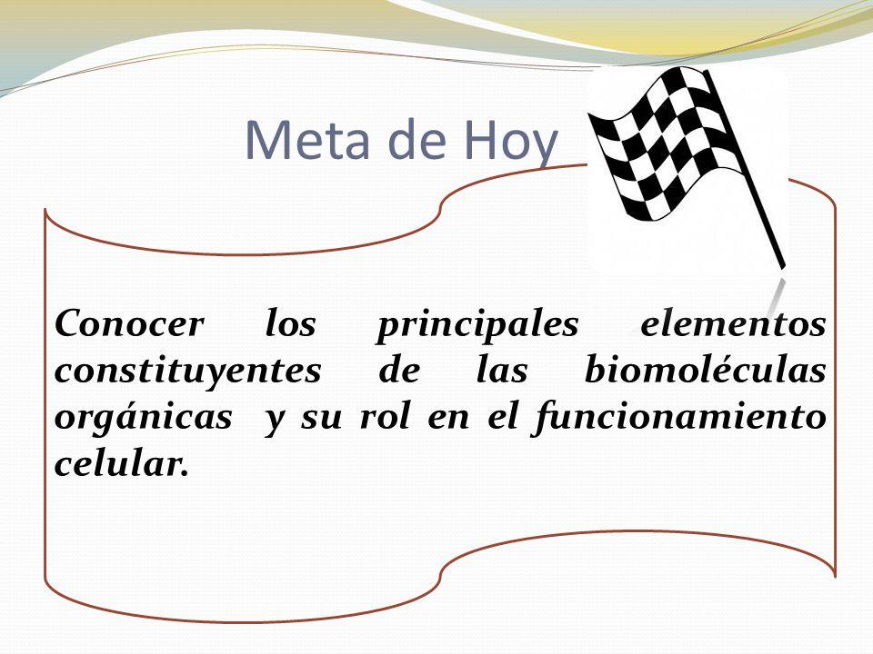 Meta de Hoy Conocer los principales elementos constituyentes de las biomoléculas orgánicas y su rol en el funcionamiento celular.