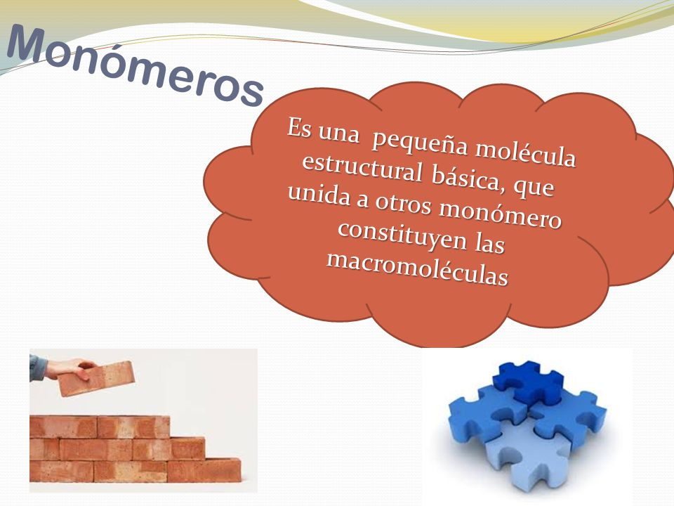 Monómeros Es una pequeña molécula estructural básica, que unida a otros monómero constituyen las macromoléculas.
