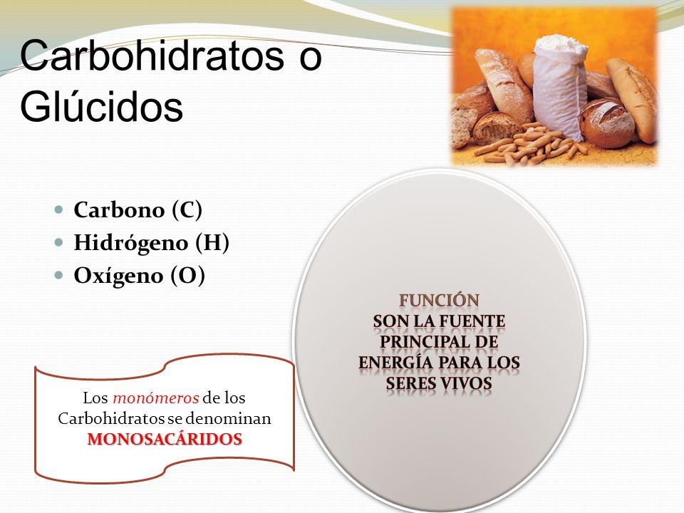 Carbohidratos o Glúcidos