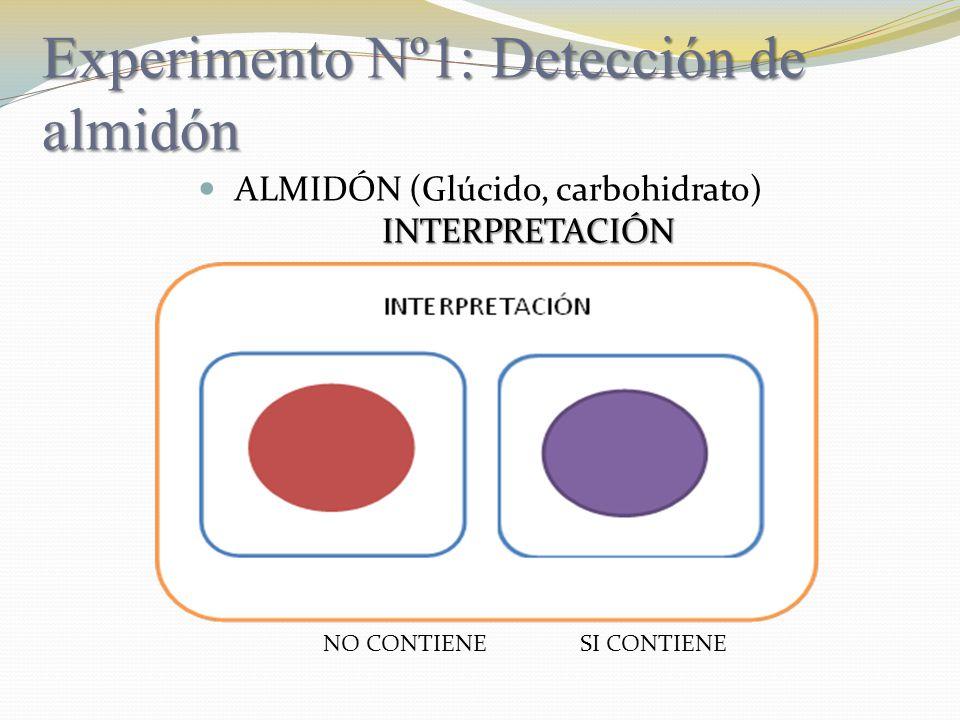 Experimento Nº1: Detección de almidón