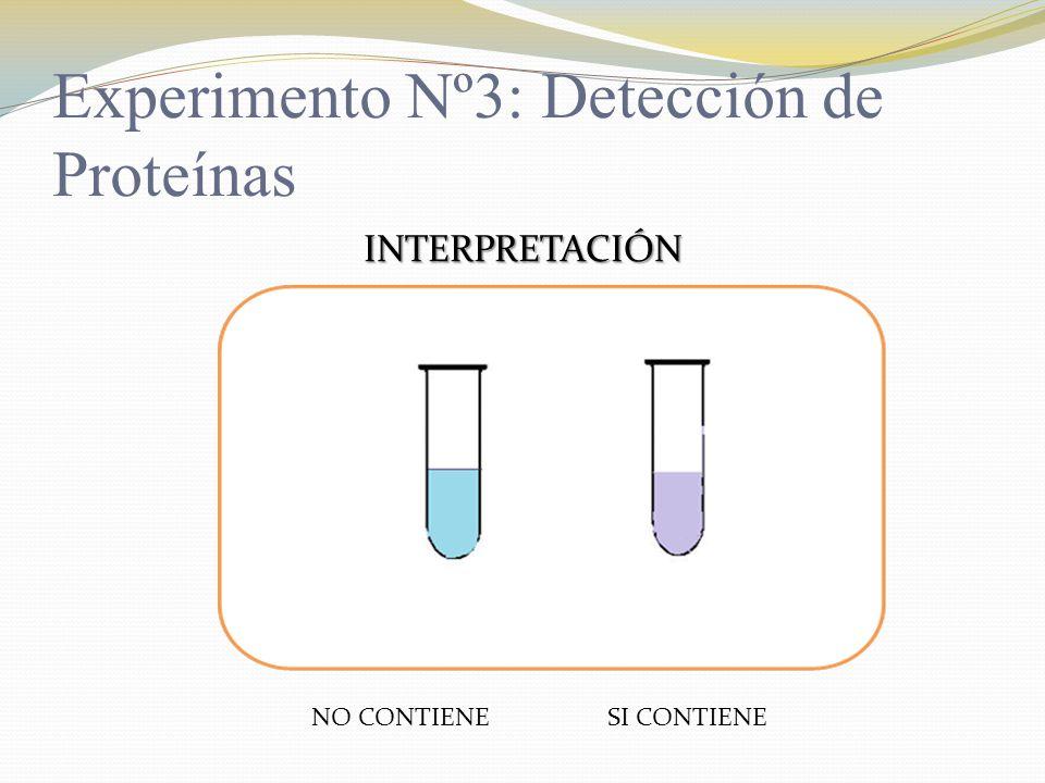 Experimento Nº3: Detección de Proteínas