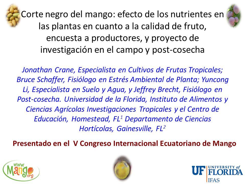 Corte negro del mango: efecto de los nutrientes en las plantas en cuanto a la calidad de fruto, encuesta a productores, y proyecto de investigación en el campo y post-cosecha