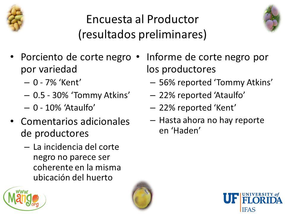 Encuesta al Productor (resultados preliminares)