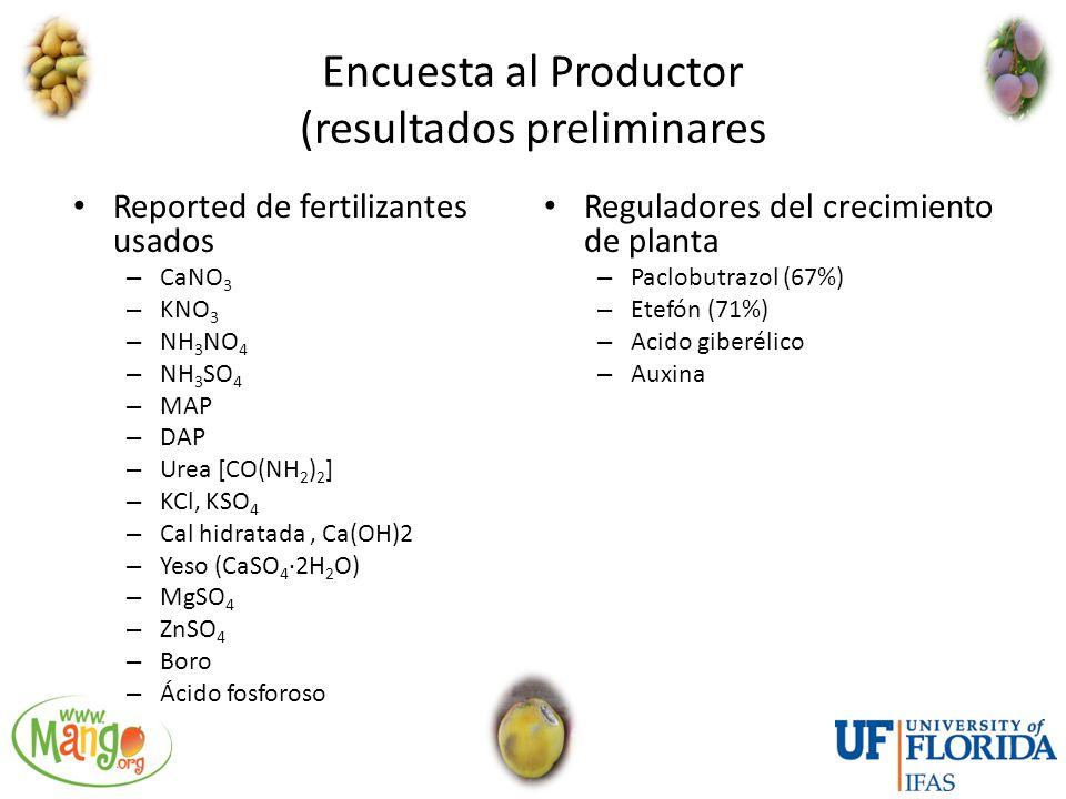 Encuesta al Productor (resultados preliminares